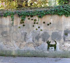 The Jean Cocteau's cat, Moss graffiti.