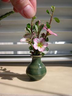 Miniature Flower Arrangement, by Janit Calvo. #tiny #small #flower #arrangement