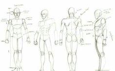 Anatomy sketch