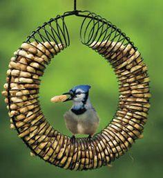 DIY birdfeeder from slinky and wire hanger!!