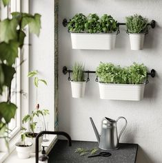 ikea plants herbs in kitchen Kitchen Herbs, Herb Garden In Kitchen, Home And Garden, Plants For Kitchen, Wall Herb Garden Indoor, Herbs Garden, Fintorp Ikea, Kitchen Interior, Kitchen Decor