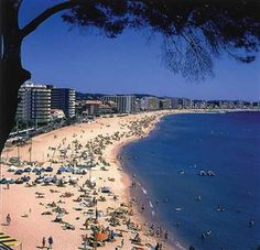 Palamos recommended hotels , tours & places