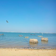 Caseria Southern Province, The Province, San Fernando Cadiz, Andalusia, Beach, Water, Outdoor, Beautiful, Beaches