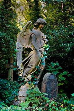"Photo by Dave Walsh ""Ornamental grave statue in Highgate Cemetery London"" Cemetery Angels, Cemetery Statues, Cemetery Art, Angel Statues, Cemetery Monuments, Greek Statues, Buddha Statues, Angel Sculpture, Art Sculpture"