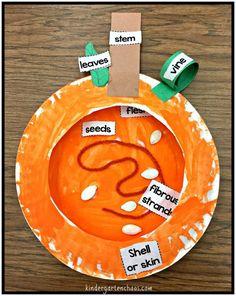 Pumpkin Activities for the Kindergarten Classroom