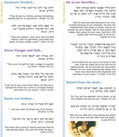 (4 of 4) The Promised Messiah document (Images 1-4) can be downloaded free as a one page foldout showing Messianic prophecies from the Bible in Hebrew and English. Visit the anointed site of www.levitt.com which we recommend highly.