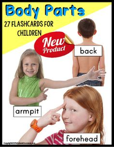 Real-life pictures Parts of the Body flashcards for young children to identify body parts in a way they can easily understand for young learners, autism, Special Education, and ELL students.27 Parts of the Body Flashcards INCLUDED (most are of the same model):lipsarmpiteyebrownosehairshoulderfaceheadhandeyelashesfeetchest (boy)bellybackfingernailscheekbuttocks (toddler)armforeheadtongueearteethkneechinelbowneckeyesTO USE AS A MATCHING ACTIVITY, please print two sets.TO COVER BODY PART NAME…