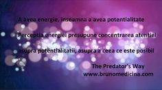 Having power/energy  means having   potentiality.Perception requires concentration on potentiality, on what is possible - Bruno Medicina  http://www.traininguri.ro/predator-selling/ https://www.facebook.com/bruno.medicina.1?fref=ts http://www.brunomedicina.com/