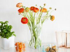 Iittala Alvar Aalto Collection Vases.