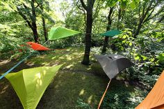 baumraum   Tentsile – das Baum-Zelt