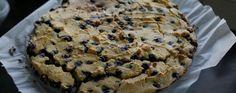 Kokos-blauwe bessen koek