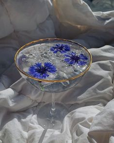 Flowers, blue, fashion, cool, cute, drink, water, hot, boys, girl, outfit, makeup, summer, inspo, tiktok Baby Blue Aesthetic, Light Blue Aesthetic, Classy Aesthetic, Princess Aesthetic, Aesthetic Colors, Flower Aesthetic, Aesthetic Collage, Aesthetic Food, Aesthetic Vintage