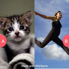 Would you rather have 9 lives or be able to fly? Click here to vote @ http://getwishboneapp.com/share/5555965