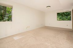 Large lower level spare Bedroom
