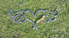 Hey, I found this really awesome Etsy listing at https://www.etsy.com/listing/231133608/horseshoe-heart-with-wings