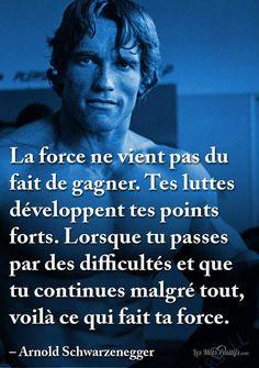 La force... Venus, Lion, Carpe Diem, Einstein, Affirmations, Coaching, Health Fitness, Positivity, Messages