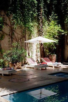 Une terrasse paradisiaque.