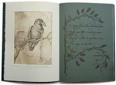 wonderful books by Charles Van Sandwyk