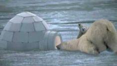 Inuit (beelden en muziek)