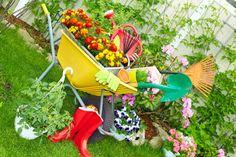 We moeten er geen doekjes om doen: een onderhoudsvrije tuin bestaat niet. Maar als je weinig zin of tijd hebt om te werken in de tuin, kun je met deze ontwerp- en beplantingstips het onderhoud toch al flink beperken…