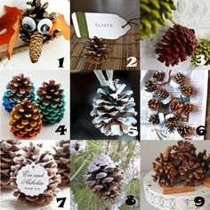Link Love: Pinecone Crafts