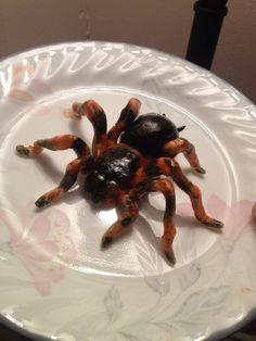 sugarpaste tarantula topper