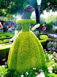 "disney-boy: "" Belle's Topiary on Flickr. """