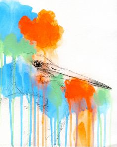 tri-color heron.