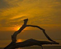 Sunset at Big Talbot Island, Florida