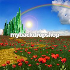 4ft x 4ft Wizard of Oz Photography Backdrop - Yellow Brick Road Backdrop-  Item 134 on Etsy, $38.99