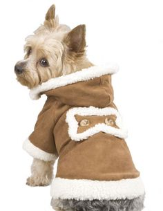 Dog Clothes- my dog need this!