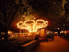 Disney Florida Carousel 2013