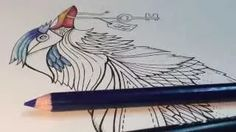 enchanted forest coloring book - YouTube