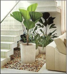39 Delicate Indoor Garden Design Ideas To Inspire You Everyday - Your garden does not have to be boring inside. I believe many people shy away from an indoor garden is because of their lack of imagination on design. Exterior Design, Interior And Exterior, Deco Restaurant, Garden Design, House Design, House Stairs, Garden Stairs, Interior Garden, Under Stairs