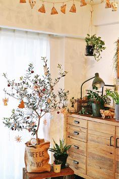 オリーブの木の画像 by RIKAさん|クリスマスツリーと観葉植物とオリーブの木✨とみどりの雑貨屋とDIYとクリスマスアレンジとX'masコンテスト-2016-とクリスマス (2016月12月5日)|みどりでつながる🍀GreenSnap