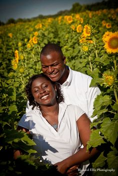 Sunflower field engagement shoot by Richard Ellis Photography