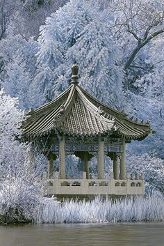 Winter fantasy, Japanese style gazebo