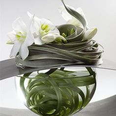 air plant GREENS AND WHITE, IN FOOTED BOWL AT FAM.RM