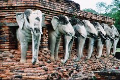Thailand / Sukothai Temple of Elephants