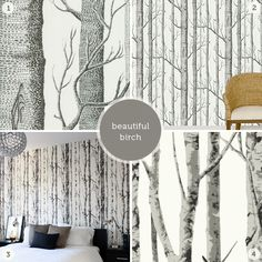 Gray Birch Tree Wallpaper Trees And Plants Pictures Tree Wallpaper Bedroom, Birch Tree Wallpaper, Bathroom Wallpaper, Cuddles In Bed, Focal Wall, Decoration, Bedroom Decor, Master Bedroom, Sweet Home