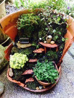 Estos bellos y pequeños jardines hechos en el interior de macetas quebradas están de moda últimamente. Son unas verdaderas obras de arte, y ...