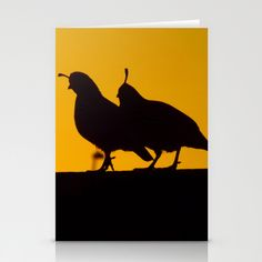 Quail at Sunset Stationery Cards