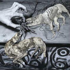 Roger Ballen and Hans Lemmen Unleashed Exhibition in Paris | Urban Mishmash | Best Things to do in Paris