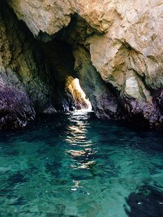 Cave swim. Point lobos Carmel by the sea California