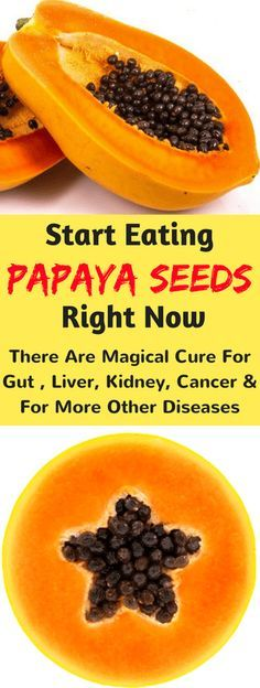 Start Eating Papaya Seeds Right Now – There Are Magical Cure For Gut , Liver, Kidney, Cancer And For More Other Diseases - Fitnez Freak