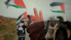 Conflict Zone, Part 3: Palestinian Protesters