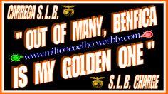 """S.L.B. (SPORT LISBOA E BENFICA) S.L.B. 00 Download Grátis - Wallpaper (1366x768) - Free Download """"Out of many, Benfica is my golden one"""" (tradução: De muitos, o Benfica é o meu dourado um) E PLURIBUS UNUM (significado/meaning): DE MUITOS, UM/OUT OF MANY, ONE Criado no dia/Created on 18/04/2016 Por/By: Milton Coelho"""
