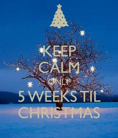 Only 5 weeks today till Christmas! Time to start the shopping. Christmas Time, Christmas Ideas, Christmas Ornaments, Community, News, Holiday Decor, Shopping, Christmas Jewelry