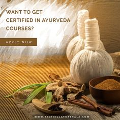 9 Best Ayurveda Institutes in Kerala, India images in 2019