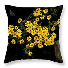 Fall Daisies Throw Pillow by T. L. Mair #HomeDecor #InteriorDecorating #Flowers www.tlmair.com